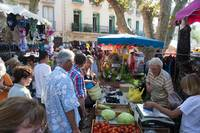 Collioure market held twice a week