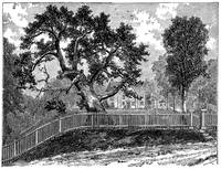 The Charter Oak of Hartford Connecticut