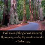 Psalm145-5 gallery