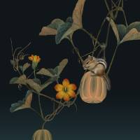 Gourd Vine and Chipmunk by I.M. Spadecaller