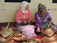 The production of Argan oil