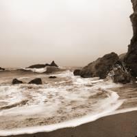 Goat Rock Sonoma Coast 035 by Richard Thomas