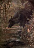 Vintage Virginia Deer Painting (1909)