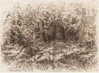 IVAN IVANOVICH SHISHKIN (1832-1898) In the Thicket
