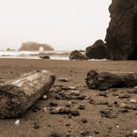 Goat Rock Sonoma Coast sepia 014 by Richard Thomas