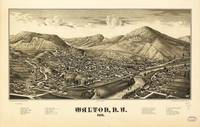 Aerial View of Walton, New York (1887)