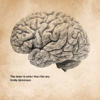 The brain is wider than the sky