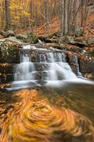 Shenandoah National Park Autumn Waterfall