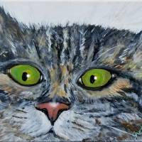 Watching you (Cat) Art Prints & Posters by Paintings by gretzky