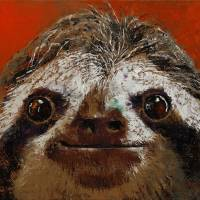 Sloth Art Prints & Posters by Michael Creese
