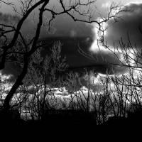 The Twilight Zone by Karen Adams