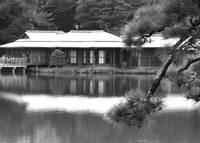 Tokyo Tea House - Black and White by Carol Groenen