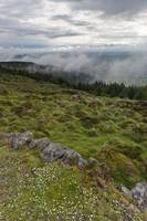 South View from Slieve Gullion by Michael Stephen Wills