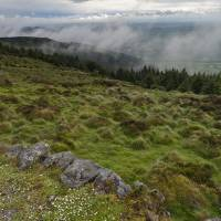 South View from Slieve Gullion Art Prints & Posters by Michael Stephen Wills