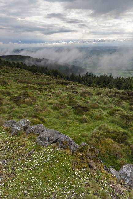 South View from Slieve Gullion