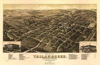 Aerial View of Tallahassee, Florida (1885)