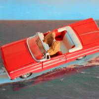 Joy Ride upgraded Art Prints & Posters by Cath Schimert
