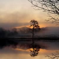 Broken Silence by Richard Thomas