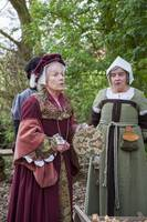 Tudor gentry visit forest workers