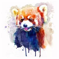 Red Panda Portrait