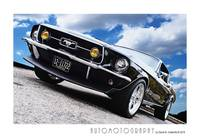 1967 Mustang Poster Color