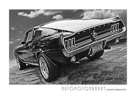 1967 Mustang Fastback Poster BW