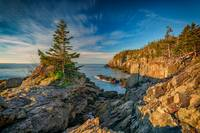 Cliffs of Quoddy Head State Park