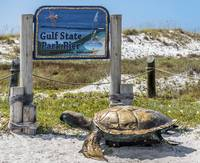 Gulf Shores Al Beach and Pier Turtle 1603a
