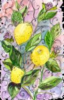 Lively Lemons copy