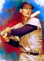 Ted Williams #19 Wall Art