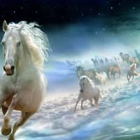In Heavens Art Prints & Posters by Igor Zenin