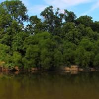 """river panorama"" by calsphotos"