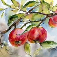 Apples and Bees Tree Branch Art Prints & Posters by Ginette Callaway