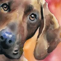 """Redbone Coonhound"" by k9artgallery"