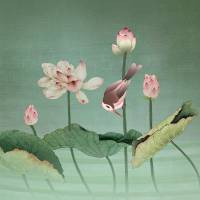 Sacred Lotus Flower by I.M. Spadecaller