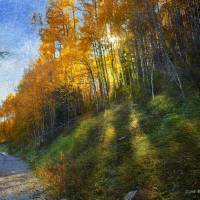 shadowed mountain road by r christopher vest