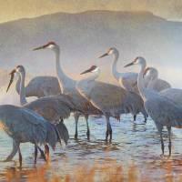group of nine cranes light fog Art Prints & Posters by r christopher vest
