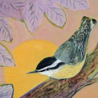 Evening Nuthatch Art Prints & Posters by Jennifer Lommers