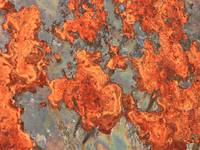 Weathered Metal Orange Oxidation  by Carol Groenen