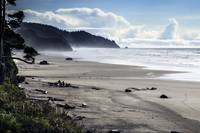 Oregon Wild Coast