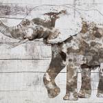 Rustic Brown elephant Prints & Posters