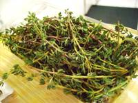 Fresh Thyme for Kale Dish