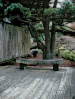 Brookside Gardens Japanese Garden Bench
