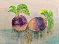 turnips watermark
