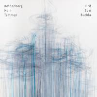 """Bird Saw Buchla CD cover"" by terranova"