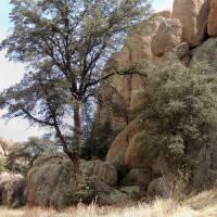 Arizona Rock Outcrop Art Prints & Posters by Gordon Beck