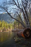 Merced River in Valley View