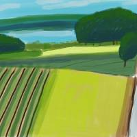 Michigan Vineyard Landscape Art Prints & Posters by michael pfleghaar