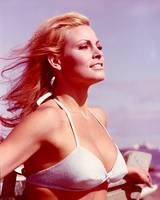 Raquel Welch with wind in hair
