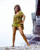 Raquel Welch by the ocean